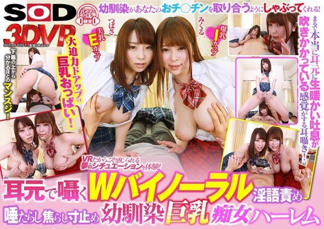3DSVR-0257 - Tsubasa Hachino - cover