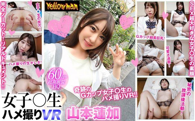 YP-Y007 - Renka Yamamoto - cover