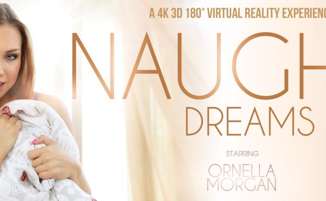 VR Porn video with Naughty Dreams Ornella Morgan